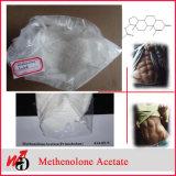 Testostérone stéroïde Isocaproate d'OIN de testostérone de poudre de forme physique