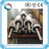 Motor de indução Ye3 à prova de explosões trifásico de alta tensão energy-saving