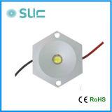 Luz al aire libre blanca caliente del módulo de China LED de la venta caliente