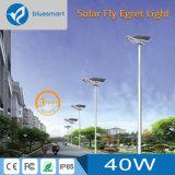 alto alumbrado público solar de la batería de litio del índice de conversión 30W LED con el panel solar