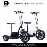 Triciclo eléctrico de la FAVORABLE flexión alegre 3 para los minusválidos