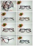 Glas Tr/Acetate/Medal het Optische Eyewear van uitstekende kwaliteit