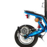 "1000W 12 "" Folding Electric Bicycle met Disk Brakes (mes-013)"