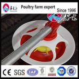 Poulet à griller Innaer de haute qualité maison de ferme (ISO9001) pour l'Aviculture