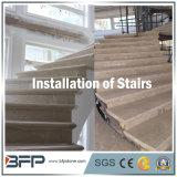 De elegante Natuurlijke Marmeren Treden/de Stappen/Step&Riser/Treads van de Steen voor Ineterior & Buitenkant