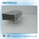 De professionele Permanente Magneet van de Motor van de Ring van het Neodymium met RoHS