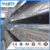 Geflügelfarm-Gebrauch-heiße Galvanisation ein Typ Schicht-Rahmen