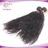 Cheveux Prix de promotion de la trame entrée Kinky Curly CHEVEUX BRÉSILIENS DE NOËL