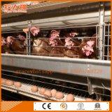 Automatische Geflügel-Batterie-Bauernhof-Maschinerie für Schichten von der Fabrik