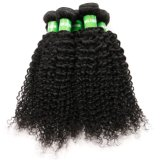 100% Remy Kinky péruvienne de Tissage de cheveux humains curl