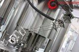 Automatische Flaschen-flüssige Plomben-Maschinerie