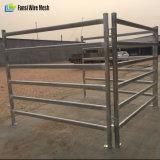 6 Stäbe galvanisiertes quadratisches Rohr-bewegliches Vieh-Hürde-Panel