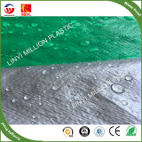 緑の銀製カラーの最も安い90GSM/120GSM PEの防水シートシート