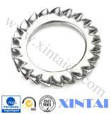 Rondelles à ressort de rondelles plates nominales d'amorçage de DIN127b 2~24 316 rondelles de freinage de solides solubles
