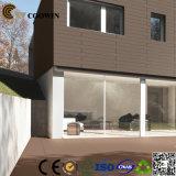 Scheda domestica della parete esterna della decorazione (TF-04S)
