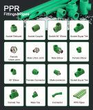 중국 공장 PPR 연결 고급장교 이음쇠를 감소시키는 플라스틱 수나사 관