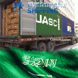 De betrouwbare Vrachtvervoerder van China Aan Saudi-Arabië/Dammam/Jeddah/Riyadh