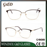 Het Model Optische Metaal van uitstekende kwaliteit van het Schouwspel van het Frame voor In het groot Eyewear