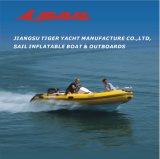 돛 2 Stroke 40HP Outboard Motor (2003년부터 Manufacturer)