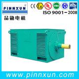 Große Energien-Kurzschluss-Motor IP23 mit hoher Drehkraft