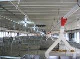 Chinese Lage Kosten en de Volledige Apparatuur Van uitstekende kwaliteit van het Gevogelte van de Reeks Automatische voor Laag en Grill (xgz-GR017)