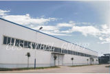 Estructura de acero de la luz del bajo costo para el almacén o la fábrica