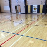 Pavimentazione sintetica di sport del vinile per la corte di calcio