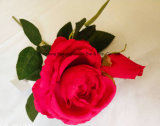 Buscando Real artificial de seda rosa flor en varios colores para el hogar decoración de boda