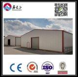 Entrepôt personnalisé par qualité de structure métallique (BYSS006)