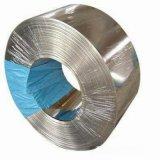 Striscia d'acciaio galvanizzata acciaio chiaro di G550 Z275g