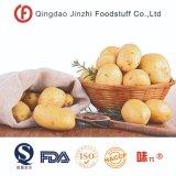 Новую Культуру свежим New Holland картофеля из Китая