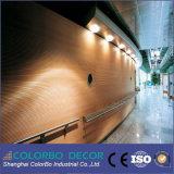 高品質のオフィスの装飾の木の防音の壁パネル
