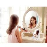 Lo specchio di vanità moderno di più nuovo disegno con ingrandice lo specchio