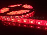 装飾的なライトLED照明結婚式の装飾5年の保証の高い明るさ適用範囲が広いDMX RGB LEDの滑走路端燈のクリスマスの装飾