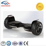 Дешевые грязи типа Scooters с электроприводом