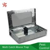Гальванизированная ловушки в реальном маштабе времени мыши металла задвижки стали ловушка крысы задвижки Multi