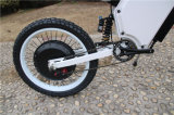 أوروبا 2 عجلة كهربائيّة درّاجة ناريّة درّاجة [8000و] لأنّ بالغ