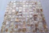Shell 20*20 del agua dulce de Brown en mosaico del acoplamiento