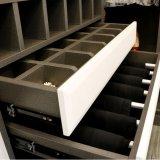 أثاث لازم بيتيّة حديثة خزانة ثوب خزانة