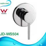 Pinのレバーの円形の真鍮の隠されたダイバーターの浴室のシャワーのミキサー