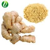 Extracto de jengibre en polvo Gingerols natural el 5%