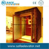 Levage à la maison en verre de bâti d'intérieur d'acier inoxydable