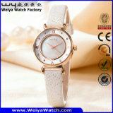 Het Horloge van de Vrouw van het Kwarts van de Riem van het Leer van de manier OEM/ODM (wy-094E)