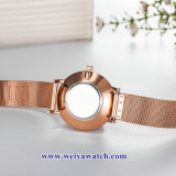 OEM Custom Mesdames montres quartz wist, Lady alliage Watch (WY-17038)