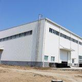 Gruppo di lavoro prefabbricato chiaro del Carport della struttura d'acciaio