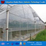 La película de plástico de túnel de la agricultura de gases de efecto invernadero de tomate