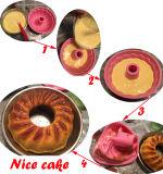 Spirale et carter de moulage de silicones de gâteau de potiron