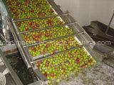 Lavadora de la burbuja para las frutas