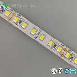 Striscia 2835 dell'indicatore luminoso di alta qualità LED con 120LEDs/M