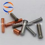 Parafuso rosqueado do aço M5*28 inoxidável (pinta) ISO13918